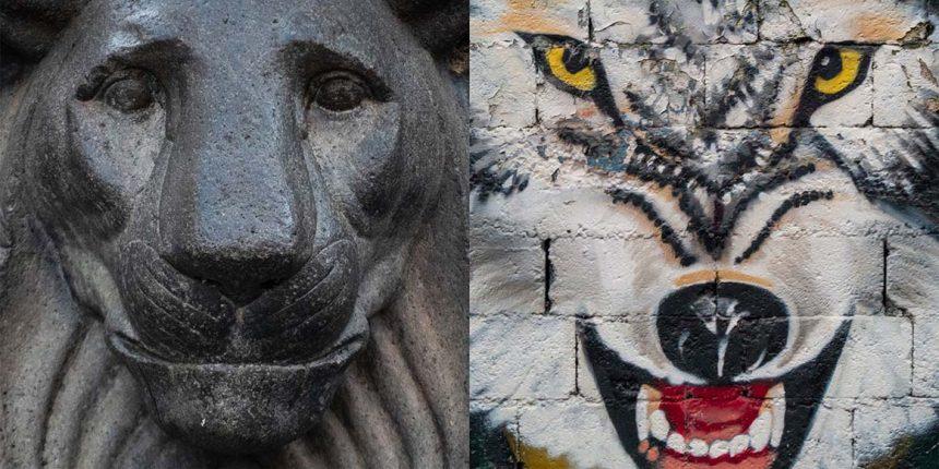 Mostre fotografiche – Padova e Triveneto novembre 2020